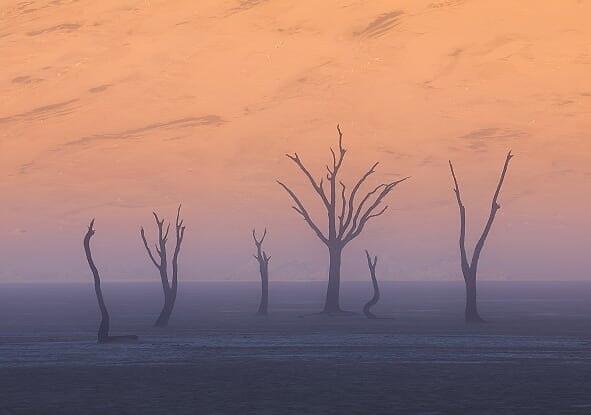 הצילומים שזיכו בציון לשבח מנמיביה (צילום: ארז מרום)