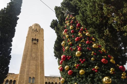 Рождественская елка в Иерусалиме. Фото: rontav, shutterstock