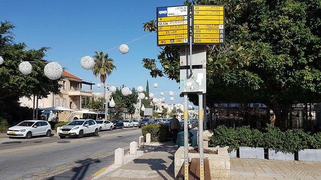 שדרות בן גוריון חיפה (צילום: אחיה ראב