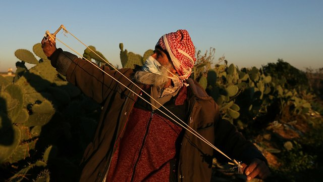 הפרות סדר של פלסטינים ברצועת עזה (צילום: רויטרס)