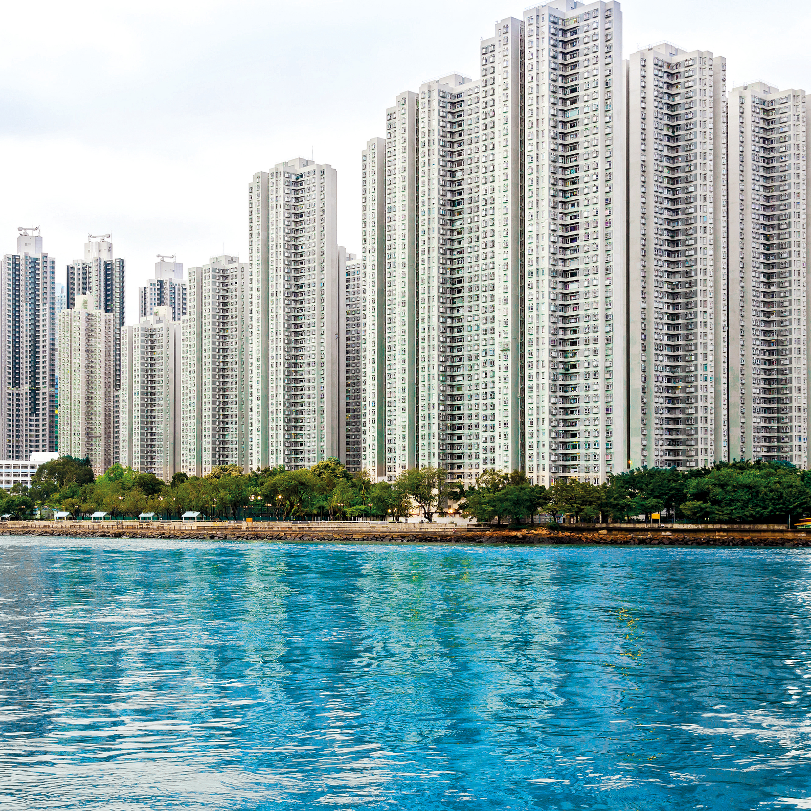 דיור ציבורי בהונג קונג. המפותח בעולם (צילום: שאטרסטוק) ()