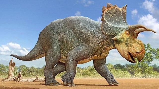 איור של הדינוזאור (איור: סרגיי קרסובסקי)