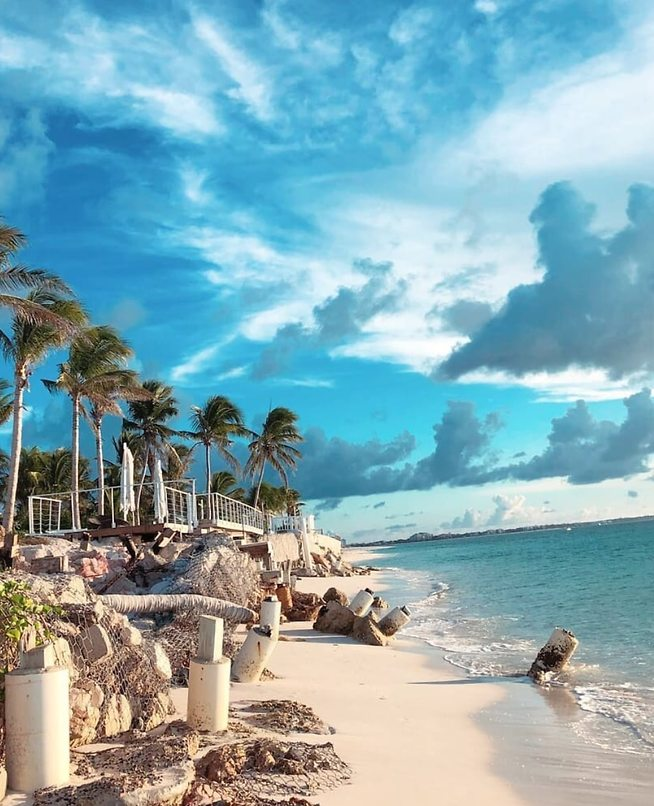 מומלץ: הליכת בוקר על רצועת החוף (צילום: דניאל דויד שליבו)