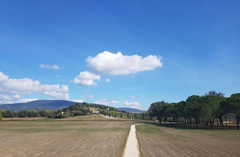לא רחוק מהכרם והיקב. השנה החל בייצור היין (צילום: ענת ציגלמן)