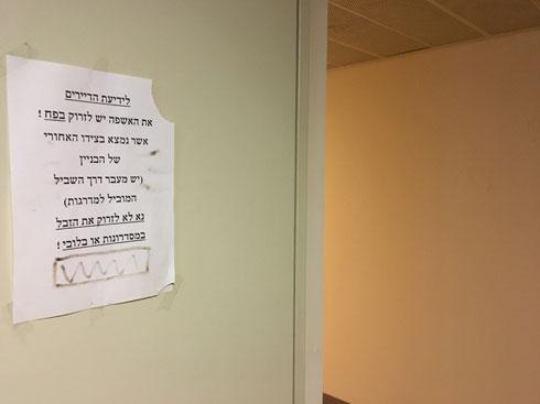 דיירים מתנהגים כמו דיירים: מתבקשים לא לזרוק זבל במסדרונות (צילום: דקל גודוביץ)