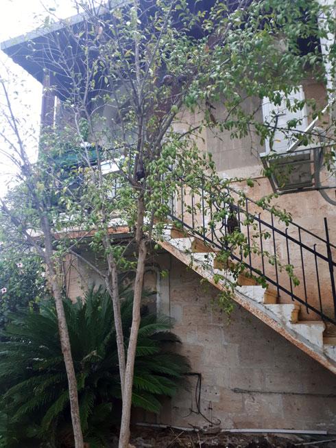 מבנה טמפלרי בן שתי קומות, שביניהן מחבר גרם מדרגות חיצוני (צילום: אורן פרבמן)
