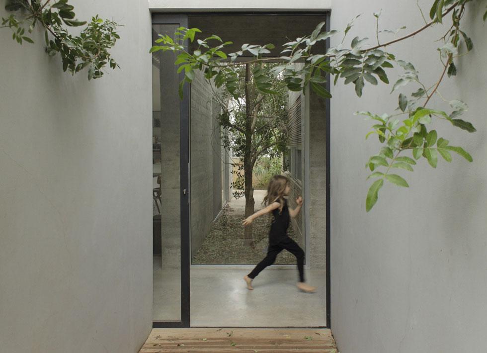 דלת הכניסה של הבית עשויה זכוכית, והדבר הראשון שרואים הוא ירוק. ''קישוט הוא זוטות, אבל המרחב שלנו אינו זוטות. הוא תורם לתחושת הביטחון והאושר שלנו'' (צילום: באדיבות studio id253)