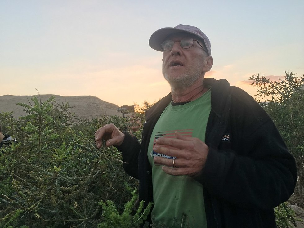 גיא ארליך, מייסד חוות האפרסמון (צילום: גלעד כרמלי)