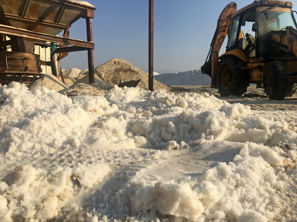 מפעל המלח של ג'ורג' חאלב (צילום: גלעד כרמלי)