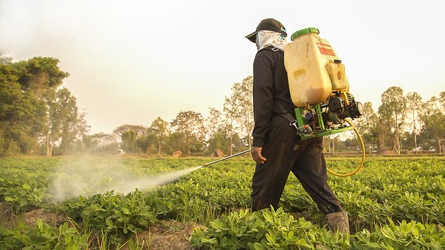 Pesticide use in Israel one of the highest in the world (Photo: Shutterstock)