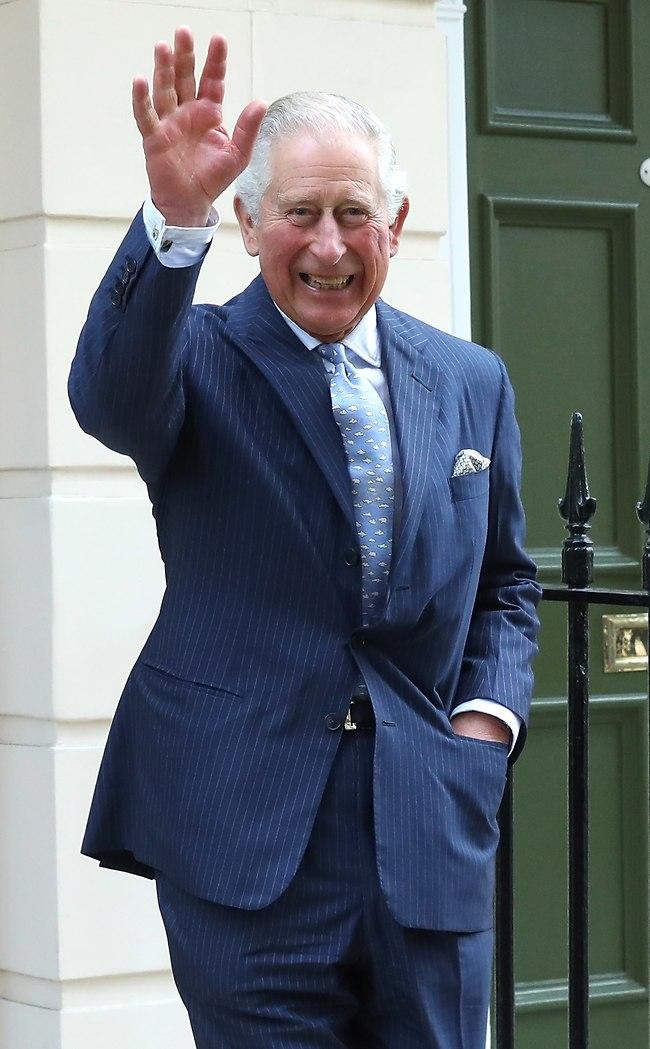 יחי המלך החדש. הנסיך צ'ארלס (צילום: Gettyimages)