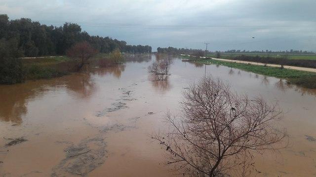 Jordan River (Photo: Yigal Shmidt)