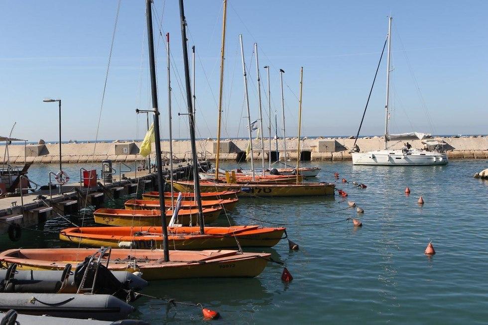 סירות בנמל יפו בתל אביב (צילום: אבי מועלם)