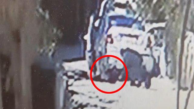 ילדה ניצלה מתאונת דרכים קטלנית בכפר ברטעה שבאדי ערה ()