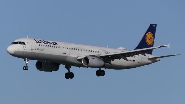 מטוס לופטהנזה בשדה התעופה בפרנקפורט (צילום: דני שדה)