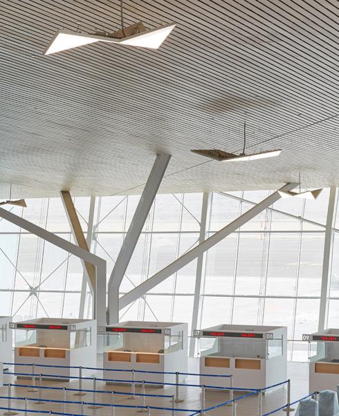 גופי התאורה התלויים מהתקרה מעוצבים באותו קונספט. עמודי התמך מזכירים עצי שיטה (צילום: Nick Hufton)