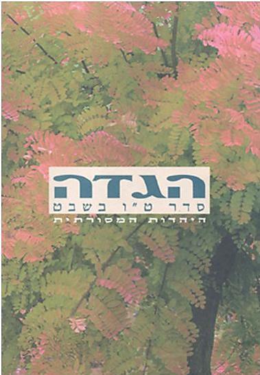 """הגדת סדר ט""""ו בשבט של התנועה המסורתית בישראל (צילום: דורית רפל)"""