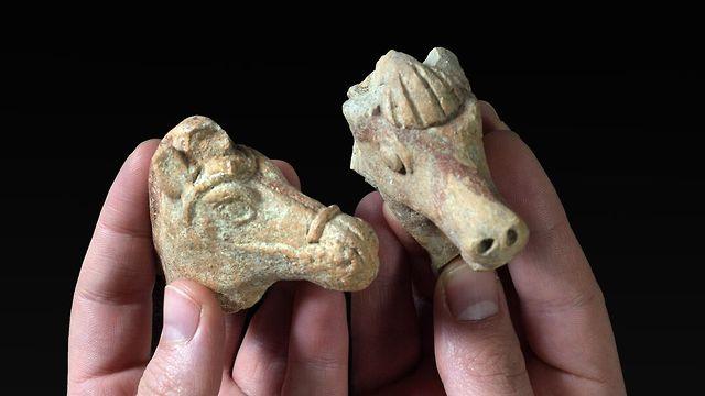 שתי צלמיות הסוס שהתגלו לאחרונה (צילום: קלרה עמית, רשות העתיקות)