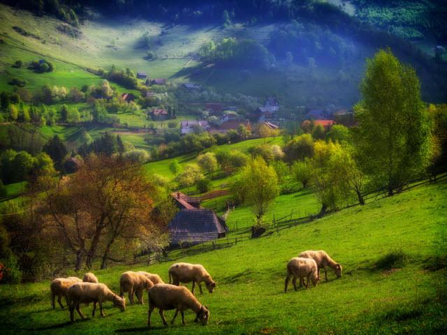 הבלקן בשיאו בעונת האביב. (צילום: shutterstock)