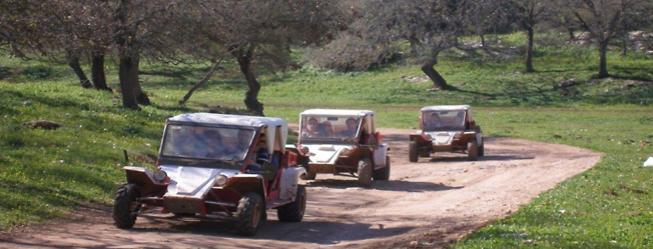 """טרקטורונים ב""""חוויית הרוכבים"""", עמותת כרמלים (צילום: עמותה לתיירות כרמלים)"""