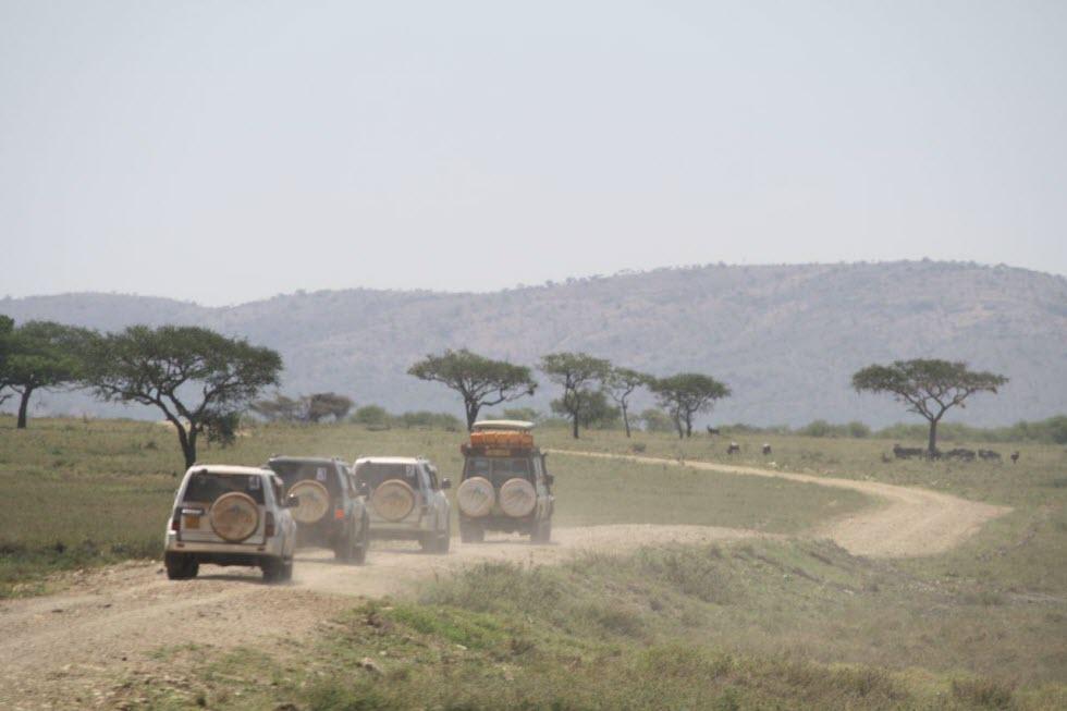 מסע אפריקן דרייב (צילום: משה גלנץ)