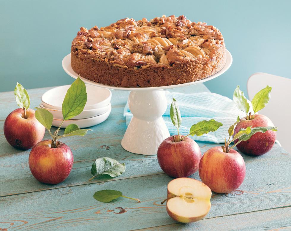 עוגת תפוחים ואגוזים (צילום: יוסי סליס, סגנון: נטשה חיימוביץ')