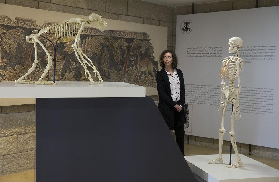 התערוכה בירושלים (צילום: עמית שאבי)