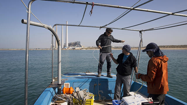 Aviad Scheinin and his team conduct research in shark-infested waters of Hadera