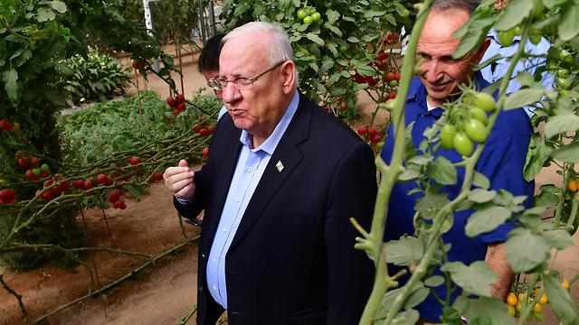 President Reuven Rivlin enjoying Israeli produce (Photo: GPO) (Photo: GPO)