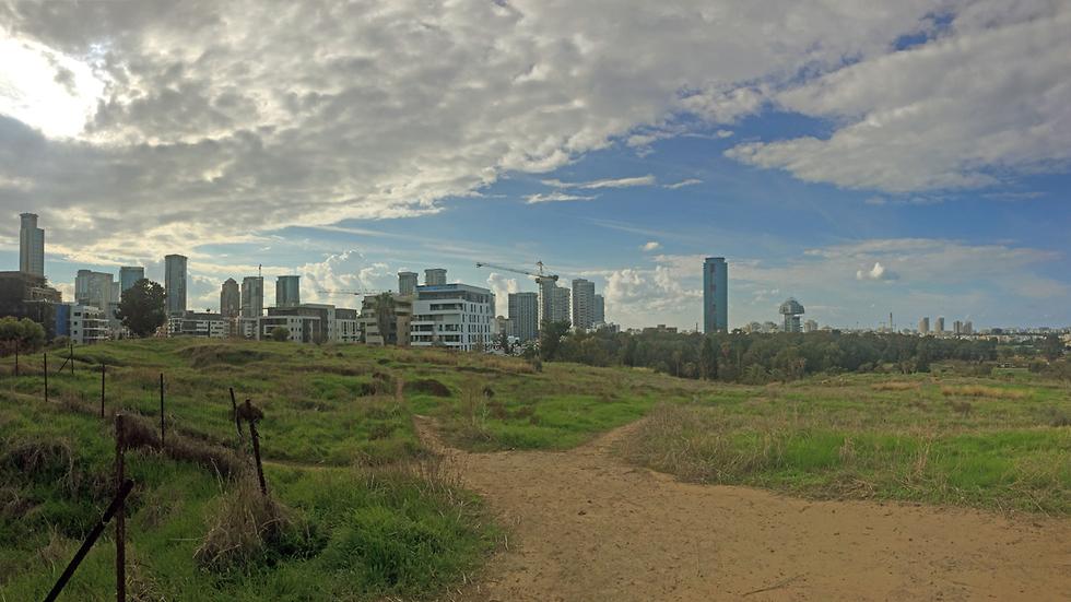 נוף עירוני מגבעת נפוליאון (צילום: גלעד כרמלי)
