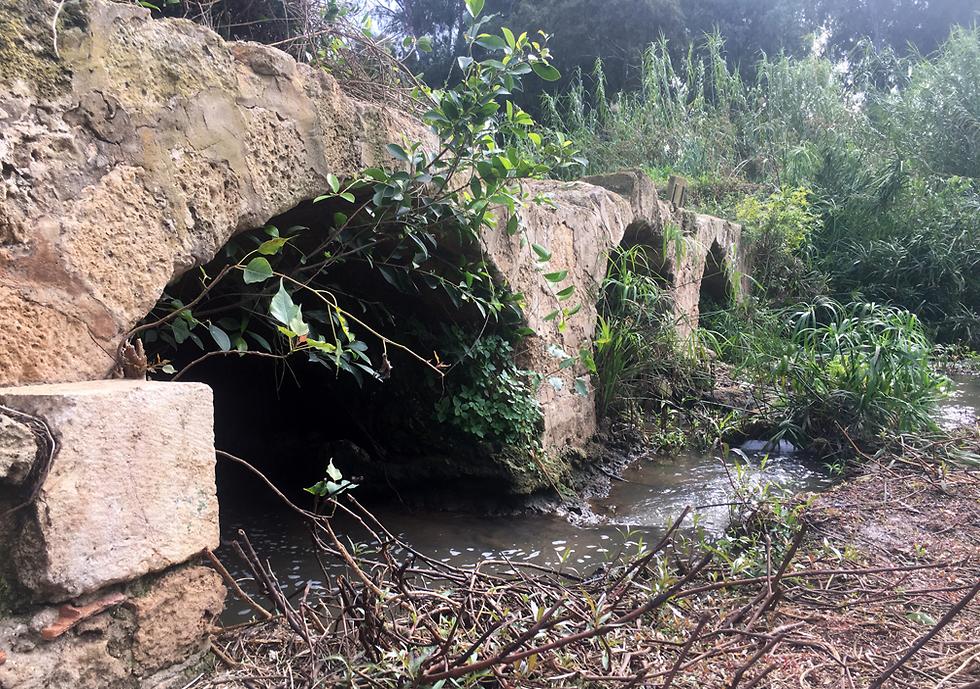 שרידי טחנות הקמח העות'מאניות (צילום: גלעד כרמלי)