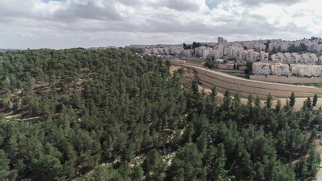 צילום רחפן עין יעל (צילום: קרונוס צילומי אוויר בע״מ)