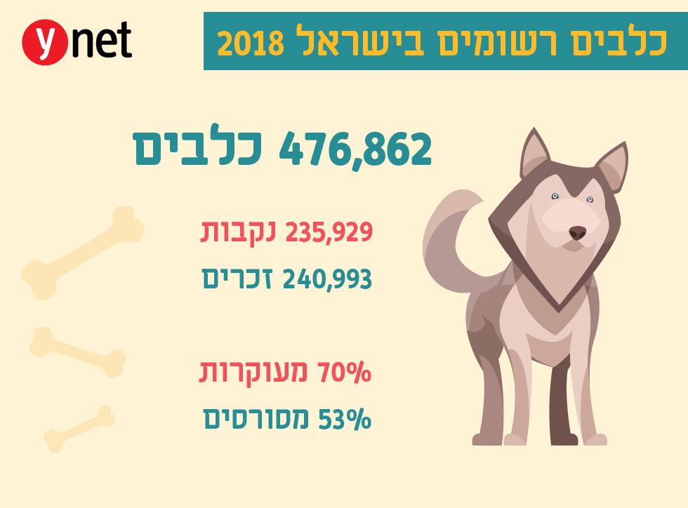 כלבים רשומים ב-2018 (איור: shutterstock)
