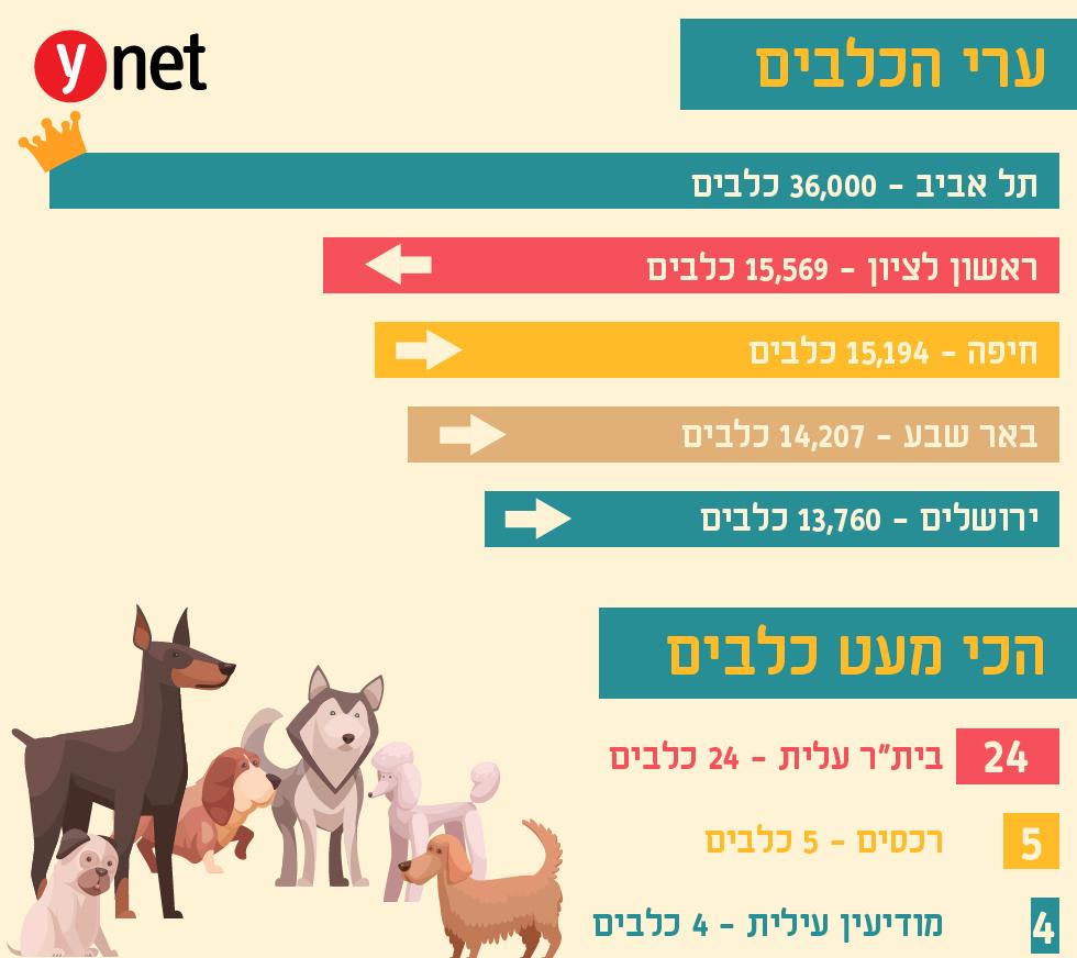ערי הכלבים (איור: shutterstock)