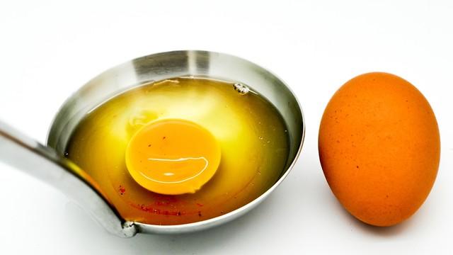 ביצה (צילום: shutterstock)