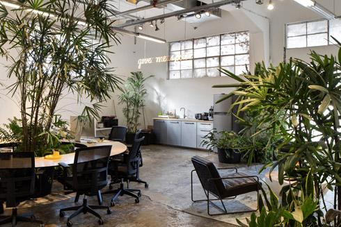 האדריכל דן חסון הציב במרכז שולחן עגול, שמקיף ומוקף בצמחייה (צילום: שירן כרמל)