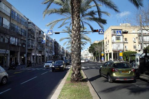 רוב אבן גבירול בנוי במקביל לכביש (משמאל). השיכונים הספציפיים (מימין) בנויים בניצב, כהפוגה מהרחוב הסואן (צילום: יריב כץ)