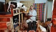 Photo: Yuval Mendelovitz Dog Rescue Farm