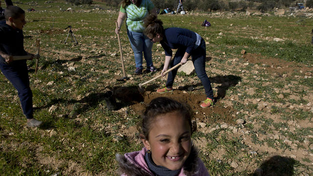 American rabbinical students plant olive trees, near the West Bank village of Attuwani, south of Hebron