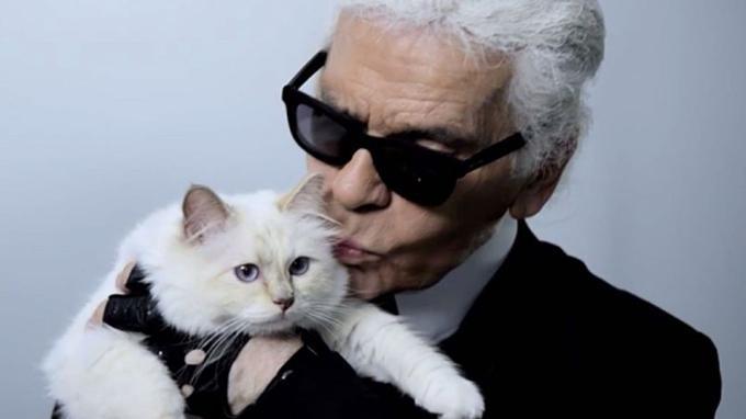 Карл Лагерфельд и его кошка Шупетт. Фото: Istagram