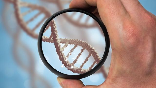 ДНК. Фото: shutterstock