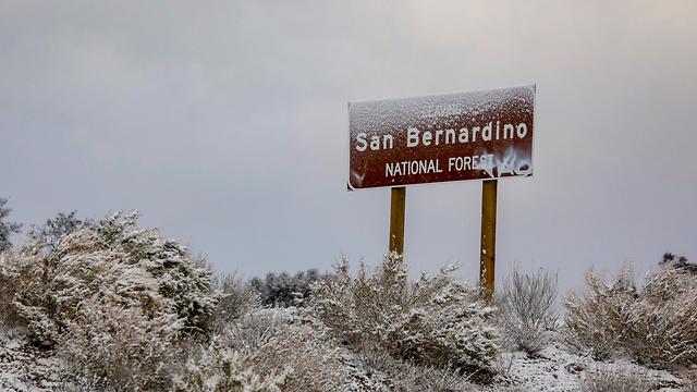 שלג לוס אנג'לס (צילום: MCT)