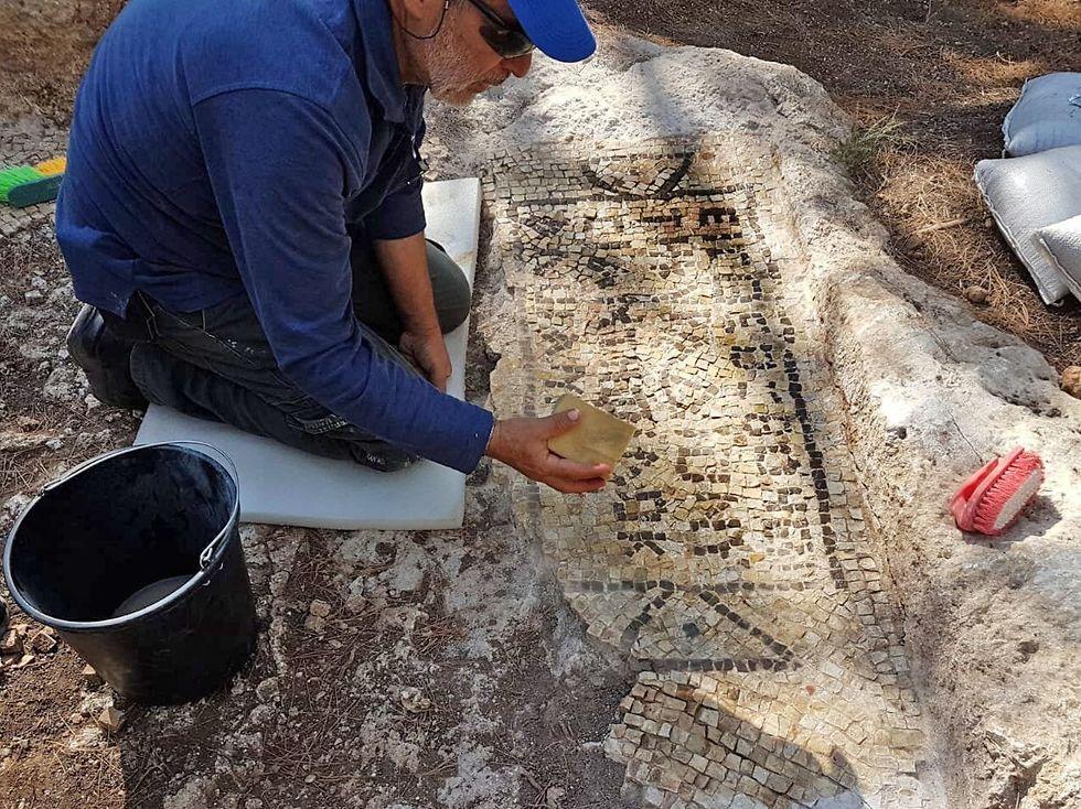 Раскопки в районе Цур-Натана. Фото: Ралеб Абу-Диаб, Управление древностей (Photo: Galeb Abu Diab, Antiquities Authority)