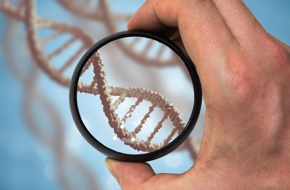 DNA (צילום: shutterstock)