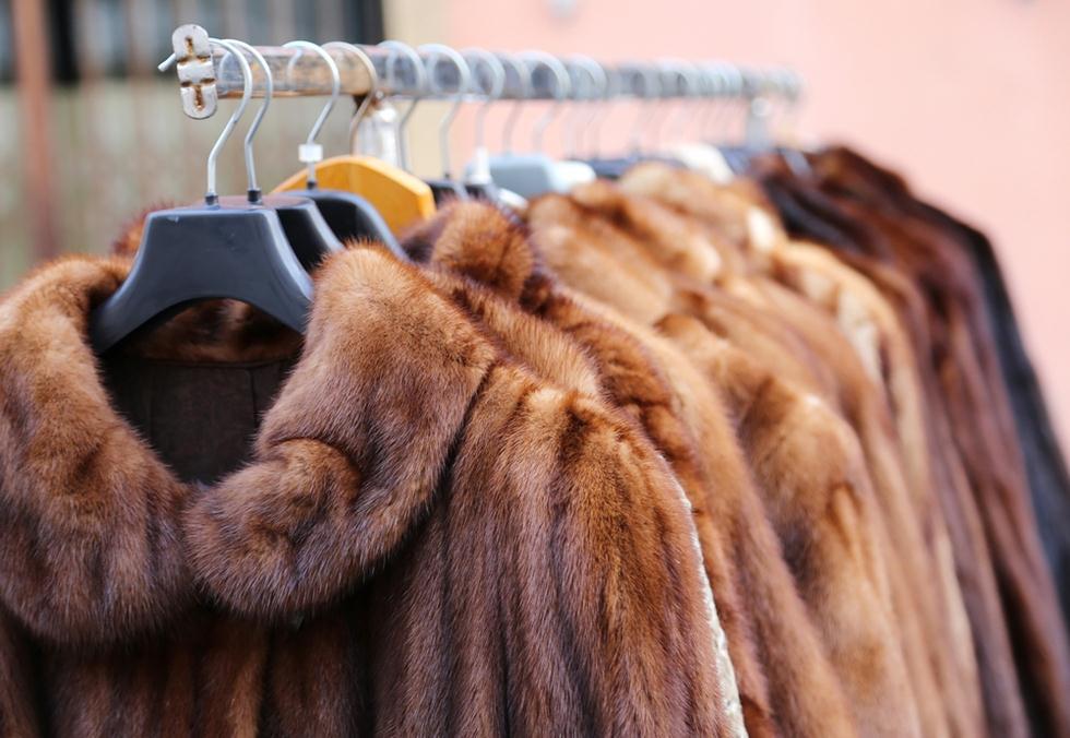 מעילי פרווה (צילום: shutterstock)
