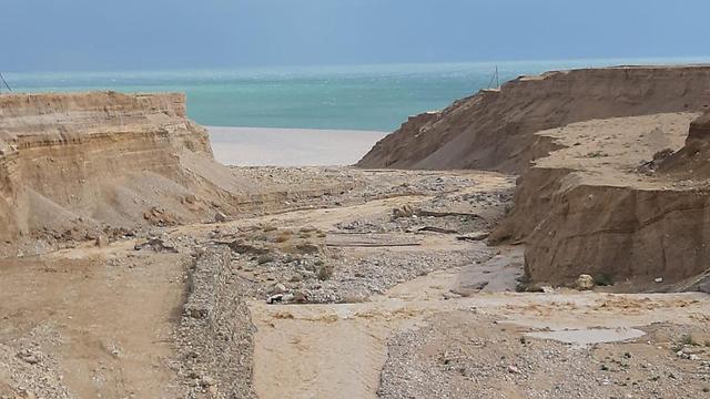 ים המלח  (צילום: דפנה שמידט )
