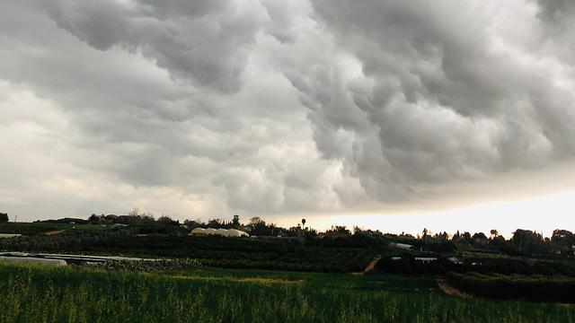 עננים בתל מונד  (צילום: יולי בר זאב)