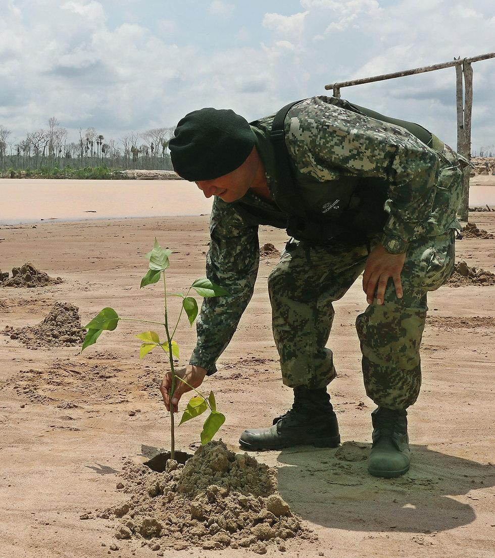 פרו הקימה בסיס צבאי כדי לשמור על העצים ב יערות הגשם אמזונס  (צילום: AFP)