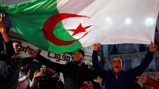 אלג'יריה חגיגות הנשיא עבד אל עזיז בוטפליקה לא ירוץ לעוד כהונה (צילום: רויטרס)