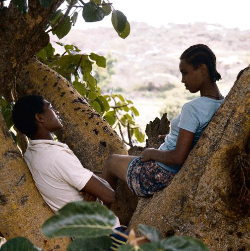 """אסמאמאווה עם השחקן יוהנס מוסה ב""""עץ תאנה"""". """"אין לי שום תקווה באתיופיה. אני כמו עץ בלי שורשים"""""""